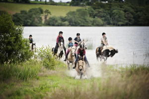 Athlone Equestrian Centre - athlone.ie