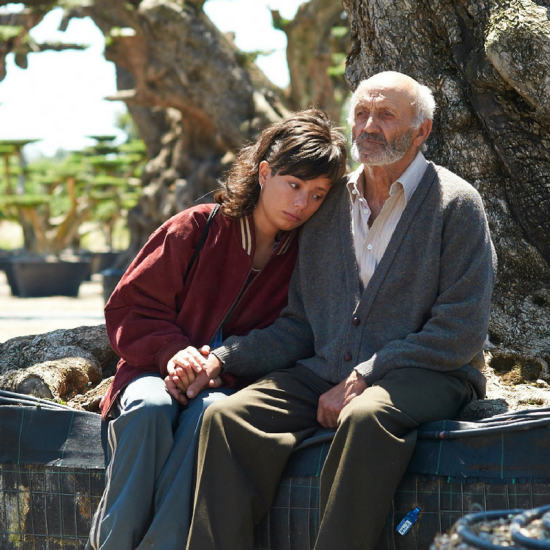 Tuar Ard Film Club presents The Olive Tree - athlone.ie (1)